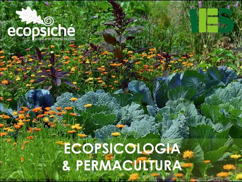 "Webinar straordinario Ecopsiché # 9 - ""Ecopsicologia & permacultura"" - Scuola di Ecopsicologia"