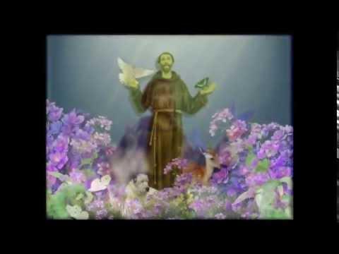 Linda Oração de São Francisco de Assis - Amor, Paz e Humildade