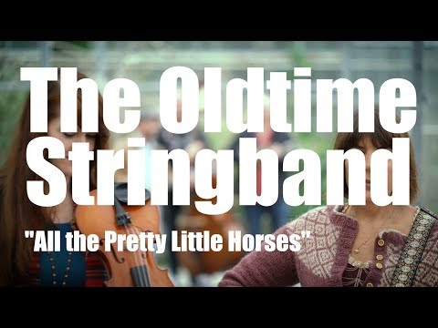 The Oldtime Stringband - All the Pretty Little Horses (traditional)