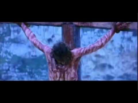 MERCY TREE BY ANTHONY EVANS WITH LYRICS