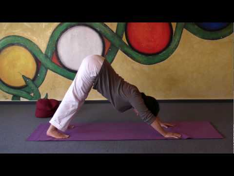 Flying Dog Pose - Yoga Exercise for strengthening your arms and shoulds - preparing headstand