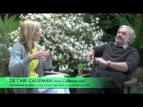 9th wave of the Mayan Calendar ending on 28th October 2011 - Dr Calleman