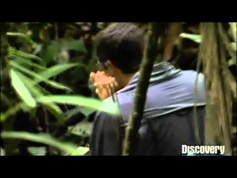 Bear Grylls - Funny Moment in Panama