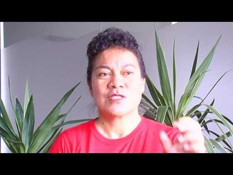Banaban -  Pelenise Alofa talking about Global Warming