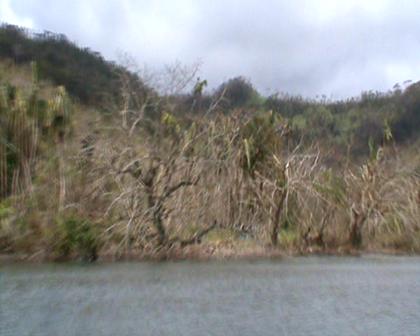Coming towards Eritabeta settlement Rabi devastated by Cyclone Tomas