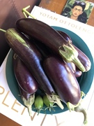A bunch of eggplants & two errant tomatoes