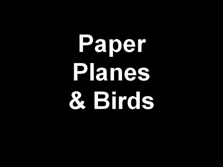 Paper Planes & Birds