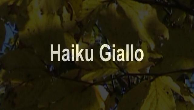 Haiku Giallo