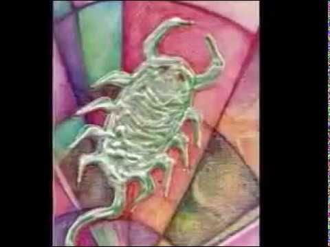 Escorpio Zodiaco Creativo