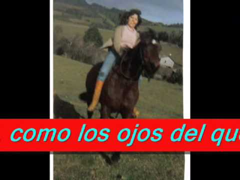 POEMA CHILE VIVA CHILE.wmv