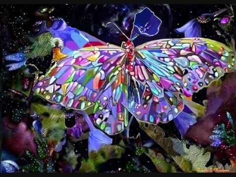 Butterfly Art From the Soul