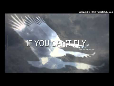 IF YOU CAN'T FLY