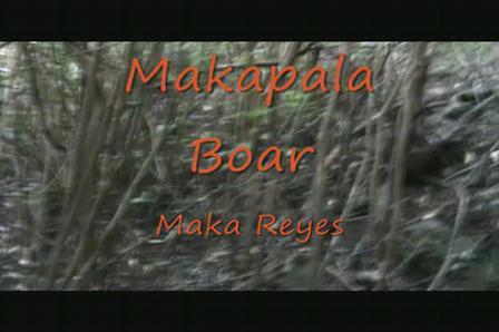 Makapala Boar