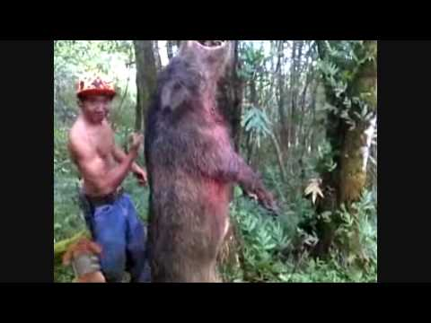 Kauai, Hawaii Boar Hunt 5/22/10