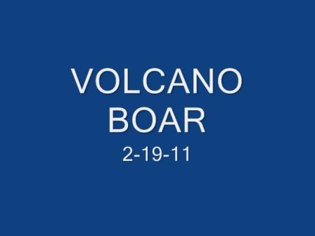 VOLCANO BOAR 2-19-11