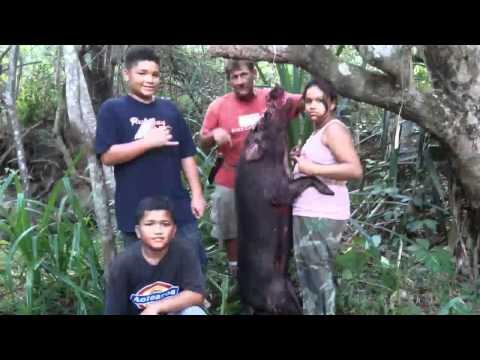 HUNTING OAHU/CHILDREN AT PLAY HOG HUNTING