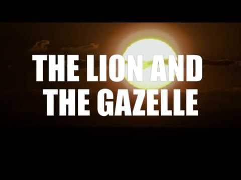 The Lion and Gazelle - Running Inspiration