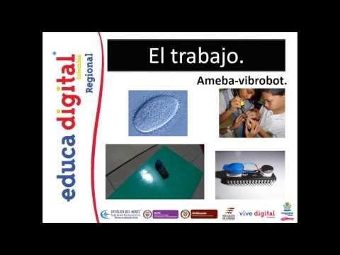 DE LA ROBOTICA A LA BIOLOGIA