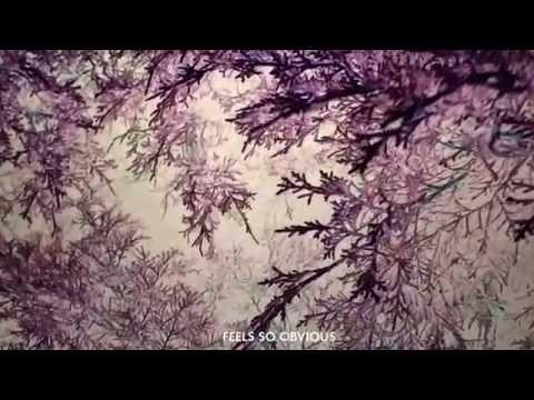 José González  - Every Age (Lyric Video)
