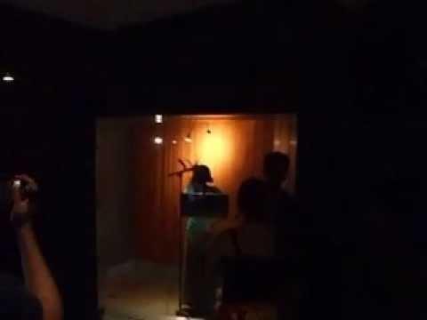 sarita denise trapp in firehouse reccording studios in pasadena
