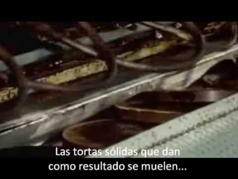 Hershey's chocolate making process