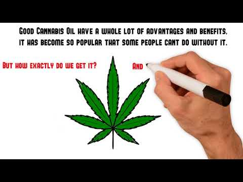 Where to get further assistance before you buy CBD oil