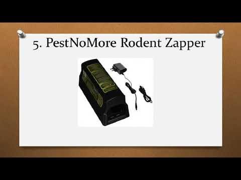 Top 10 Best Rat Traps