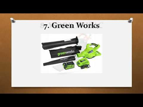 Top 10 Best Electric Leaf Blowers