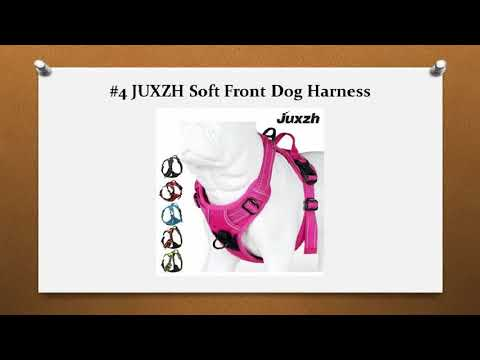 Top 10 Best No Pull Dog Harness
