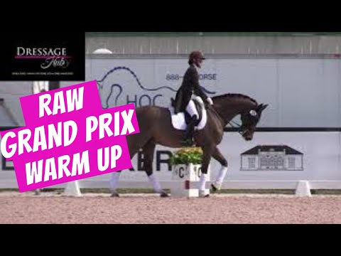 Uncut Grand Prix Warm Up Footage At Global Dressage Festival