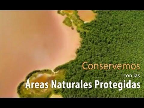 Conservemos con las Áreas Naturales Protegidas