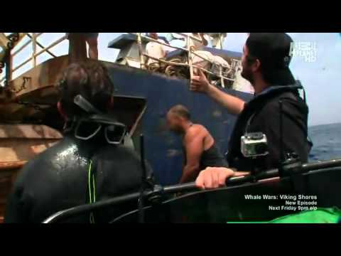 Whale Wars Operation Bluefin