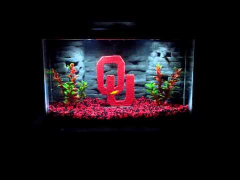 10 gal ou aquarium 3D background