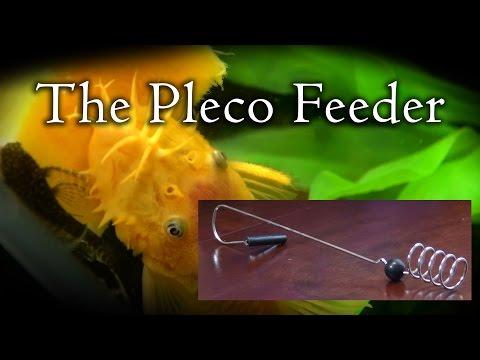 The Pleco Feeder - Setup and Review