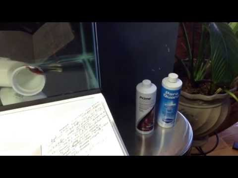 Freshwater Quarantine Tank | Airstones | Mini-Heater