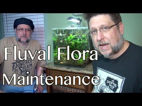 Fluval Flora Maintence