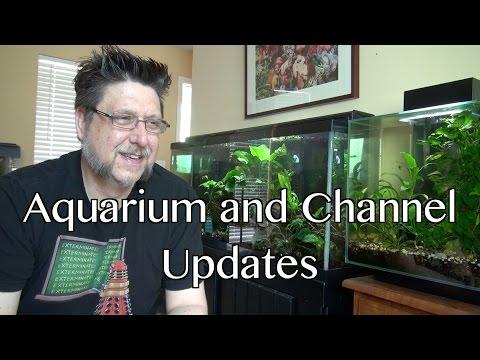 Aquarium and Channel Update