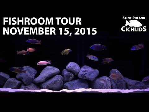 Fishroom Tour November 15, 2015
