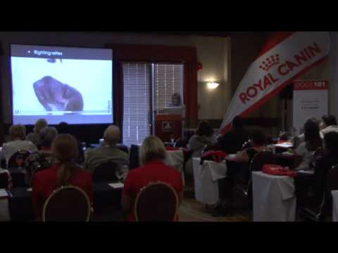 Royal Canin 1st Panamerican Convention- New developments in canine neonatalogy