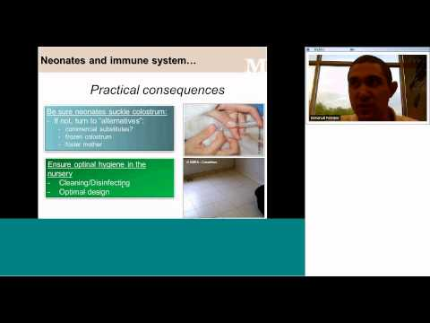 Basics in Canine Reproduction Ep III