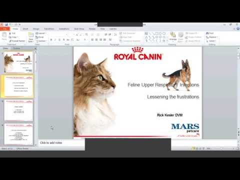 What you need to know on URI in cats