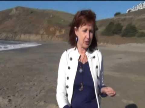 Cheryl Ammeter - PCT's 2016 Red Carpet Digital Auction Promotional Video