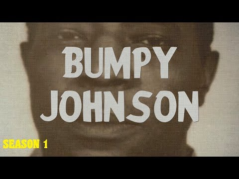 The Bumpy Johnson Chapters