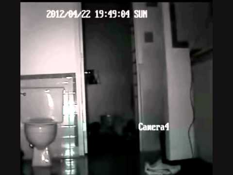 Ghost animal caught during paranormal investigation