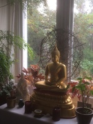 BUDDHISM AND THE ENVIRONMENT: Dhamma for Action and Change