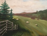 Scottish Pasture