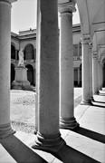 Pavia, Università
