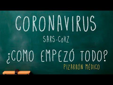 SARS-CoV2- INTRODUCCIÓN Y CRONOLOGÍA- ORÍGEN DEL COVID-19