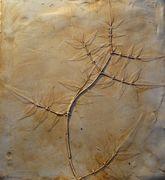 Art workshop: plaster casting from nature