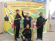 WORLD MARTIAL ARTS COUNCIL